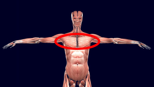 テニスで大胸筋を鍛えて、前へ押し出す力をつける