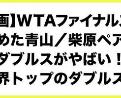 【動画】WTAファイナルズを決めた青山/柴原ペアのダブルスがやばい!世界トップのダブルス!